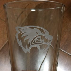 Other - 4 Etched Mascot 12 oz Glass Tumblers